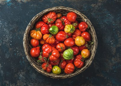 Fresh ripe Fall heirloom tomatoes in basket over plywood background