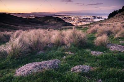 Christchurch, NZ, at sunset