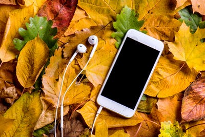 Autumn composition. Colorful leaves, smart phone, earphones. Stu