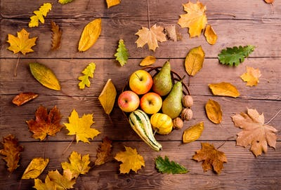Autumn leaf and fruit composition. Studio shot, wooden background.