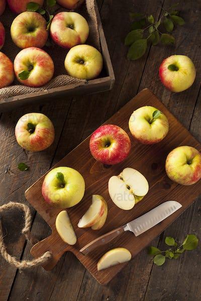 Raw Organic Honeycrisp Apples