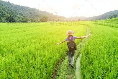 Woman traveler walking on green rice terraces field