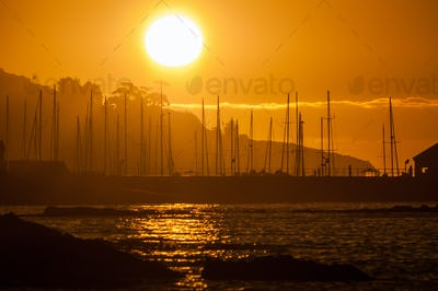 Silhouette of ships masts against sunset