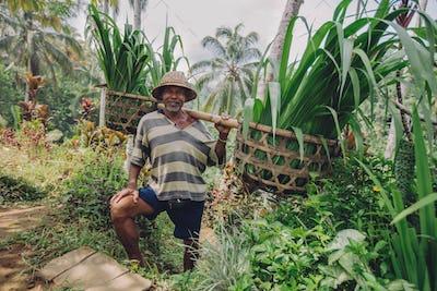 Senior farmer smiling working in his farm