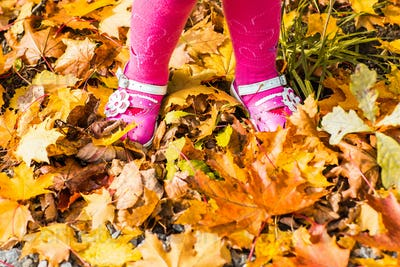 close-up of baby feet in shoes on autumn leaves