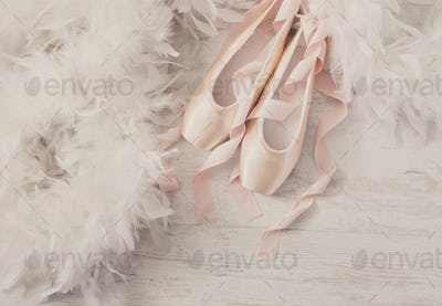 Pink ballet pointe shoes and feather on white wood background