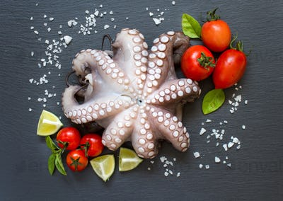 Raw octopus with lime, tomatoes and basil