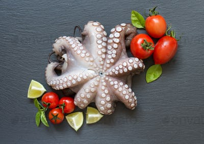 Raw octopus with lime, tomatoes and herbs