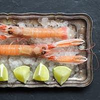 Raw langoustine on ice