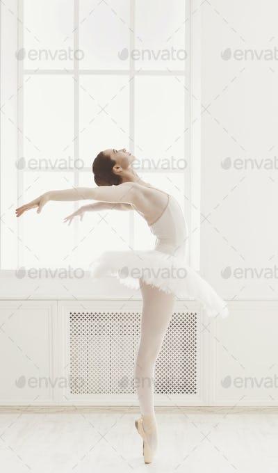 Beautiful ballerine dance in ballet position