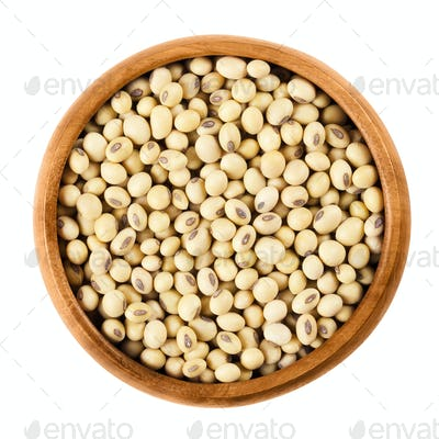 Soybeans in wooden bowl on white background