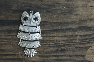 Owl Pendant Necklace on Rustic Wooden Background