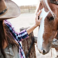 Happy beautiful young woman cowgirl taking care of her horse