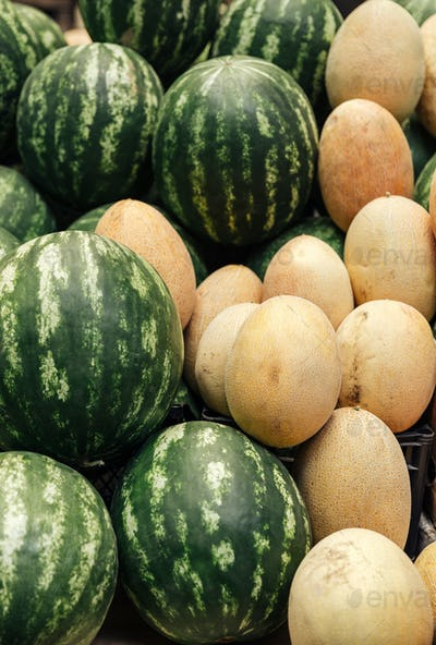 Pile of watermelons and melons