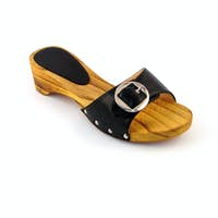 woman shoe isolated