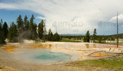 Hot Mineral Springs Bubble and Boil Yellowstone National Park