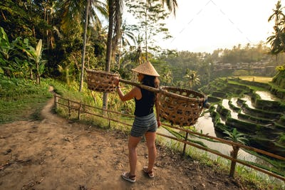 Young worker on rice field carrying around. Agricultural details on rice terraces