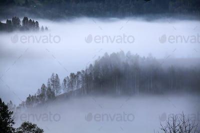 Apuseni mountains, Romania - misty autumn morning