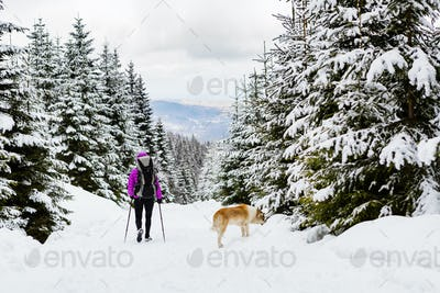 Backpacker hiking walking in winter forest with dog