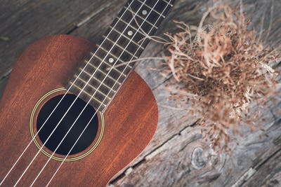 ukulele with dried flower on old wooden background