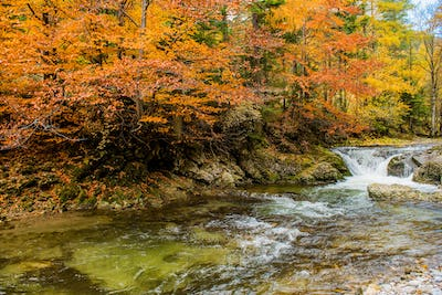 Fall Foliage Mountain River