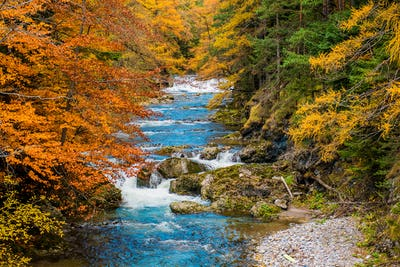 Scenic Autumn Fall Foliage