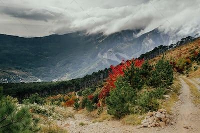 Crimea autumn mountain landscape