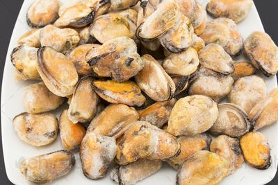 Frozen Mussels on a Plate Closeup