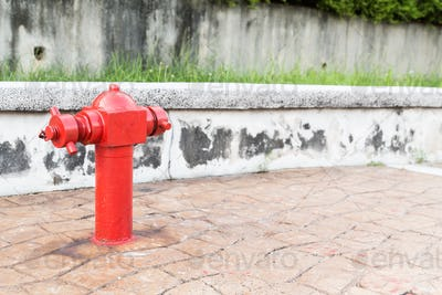 Red fire hydrant at  busy walk pavement ready for emergency