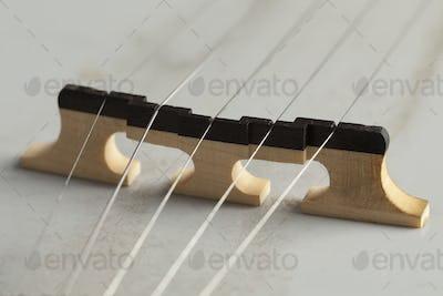 Banjo bridge