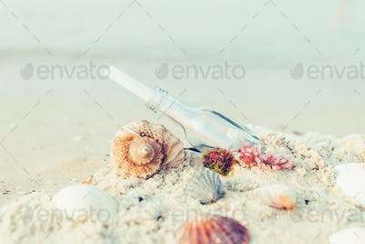 Bottle with a message or letter on the beach near seashell. SOS. Copy space.
