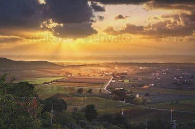 Bolgheri and Castagneto vineyard aerial panorama on sunset. Mare