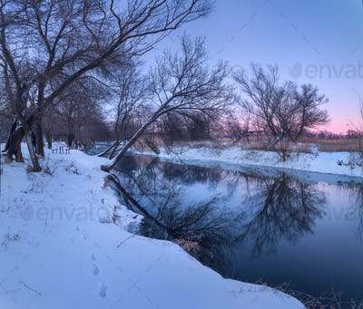 Winter forest on the river. Colorful landscape at sunset