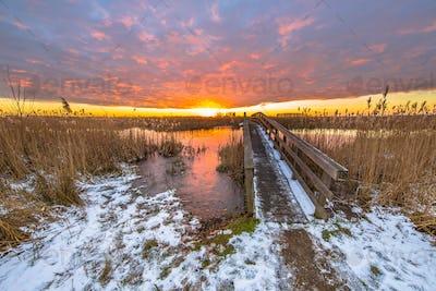 Winter landscape pathway
