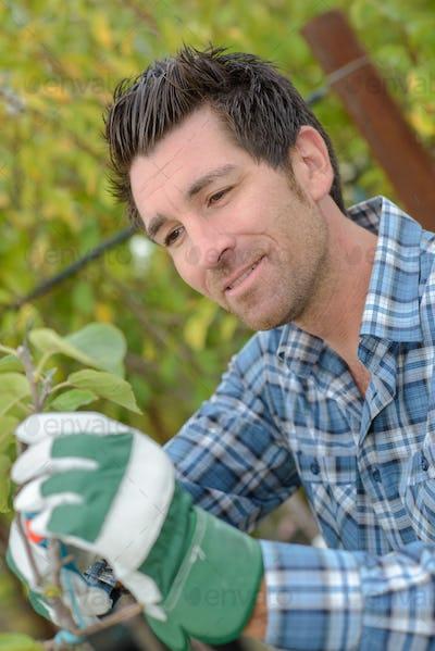 gardener enjoying his work