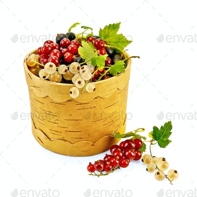 Currants in Berestov tueske