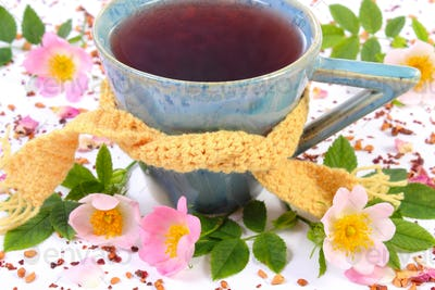 Cup of tea with wild rose flower on white background