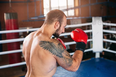 Boxer in red  boxing gloves.