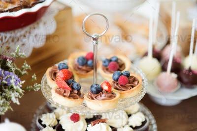 Table with fresh fruit tarts, cupcakes and colorful cakepops