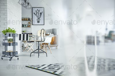 Functional open floor apartment
