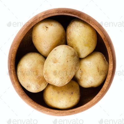 Raw mini potatoes in wooden bowl over white