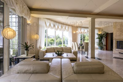 Bright living room with leather sofas