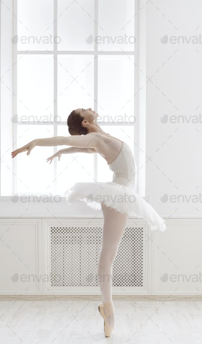 Beautiful ballerine dance in ballet position