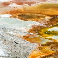 Mammoth Hot Springs Bacteria Mat