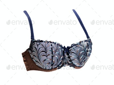 Brown and blue bra.