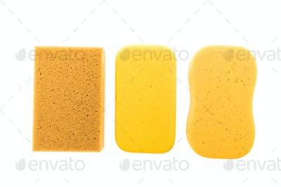 Micro sponge