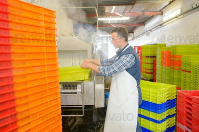 Man in factory washing plastic crates