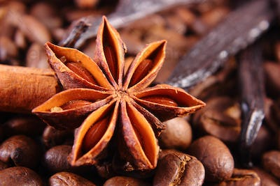 Closeup of anise, vanilla, cinnamon sticks and coffee grains, ingredients for cooking or baking
