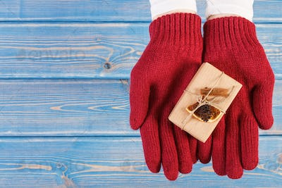 Hands of woman in gloves with decorated gift for Christmas or other celebration, copy space for text