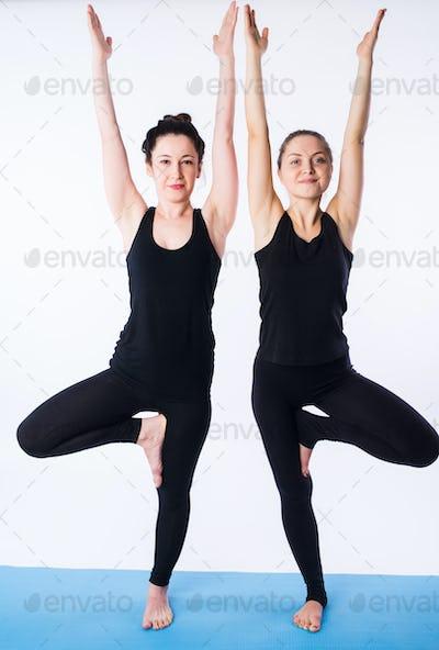 Two young women doing yoga asana tree pose Vrikshasana isolated on white background